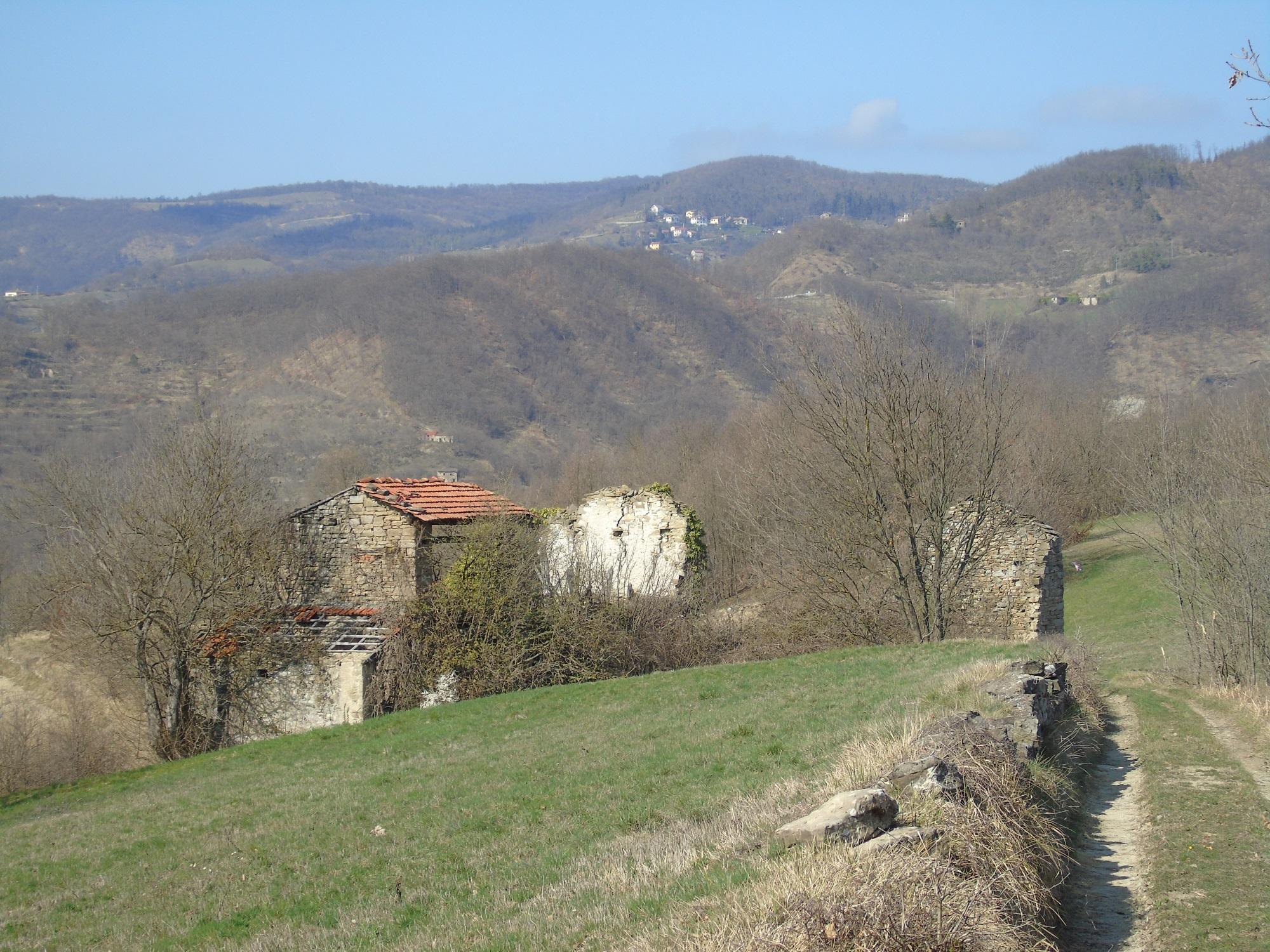 Rif.122 Rustici Campolungo